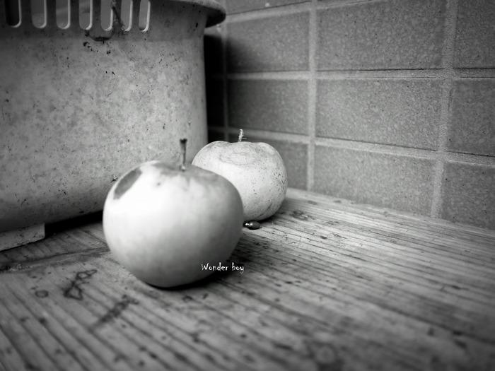 庭のリンゴ.jpg